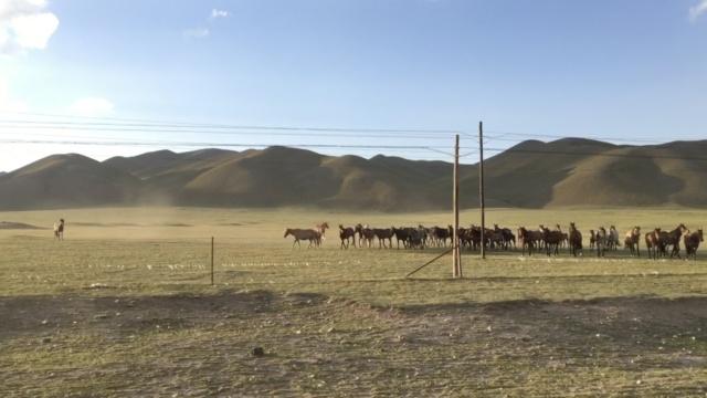 实拍中国最美公路,一生一定走一次