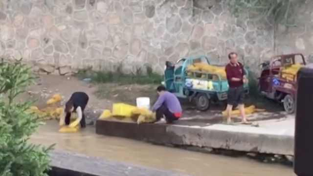 商贩污水里洗核桃,市民直呼不敢吃