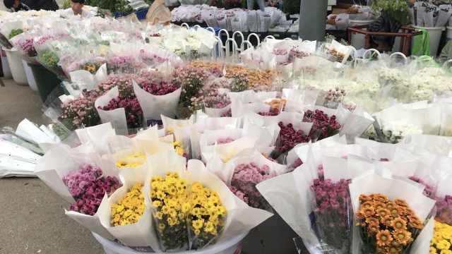 探秘中国最大花卉市场:鲜花论斤卖