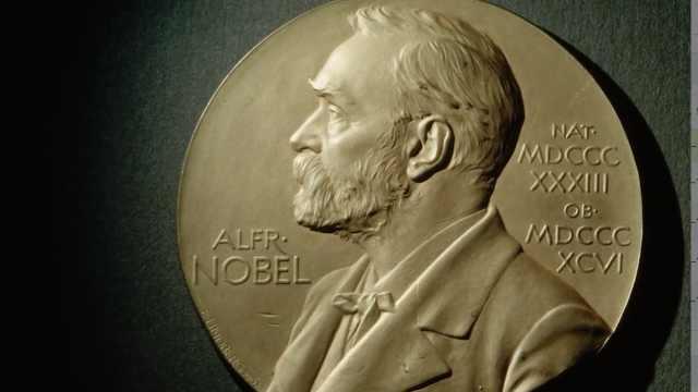 诺贝尔奖为什么不设立数学奖?