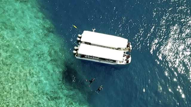 养眼!潜水圣地帕劳,看尽世间的蓝