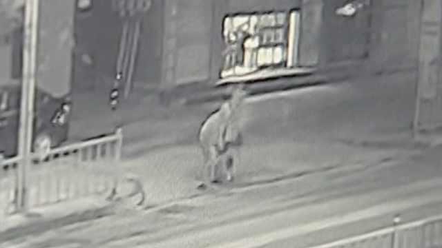 2人酒后持棍打劫,抢了350挥霍1700