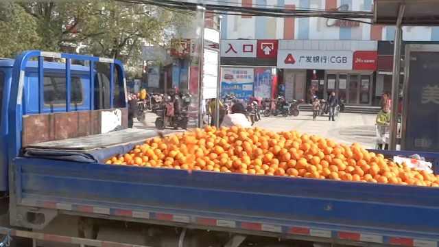 货车占位卖橘子,竟挡住公交车站