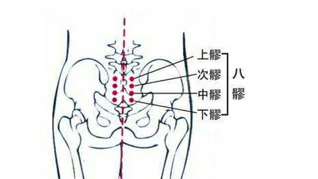 艾灸八大穴位,通臀部
