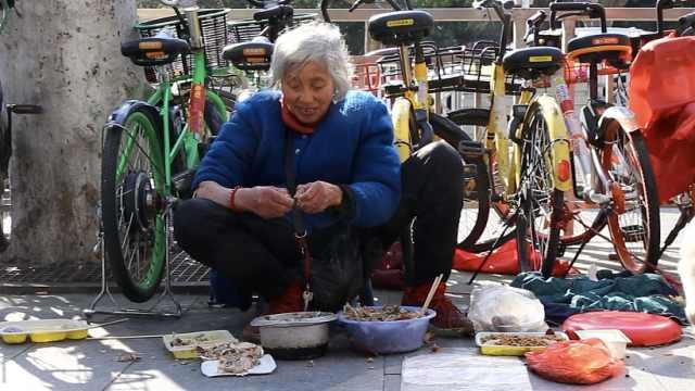 80岁奶奶喂流浪猫4年:它们饿我难过