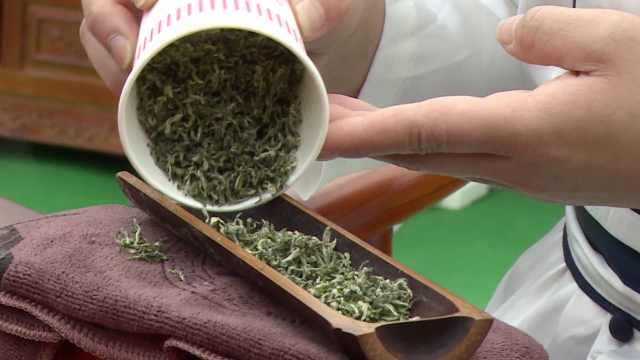 春茶上市,茶农斗茶,茶香怡人