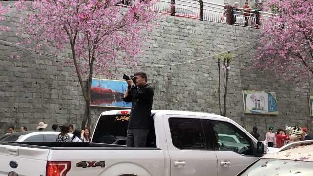 柳州城紫荆花开,大叔迷醉车顶拍照