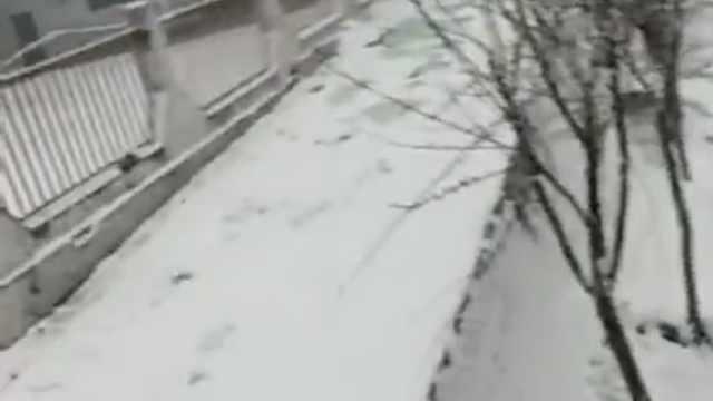 北京发暴雪预警,有地区已雪花飘飘
