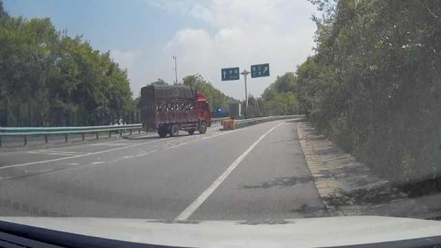 货车高速走错路,当交警面倒车改道