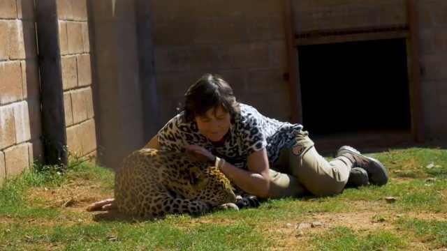 她长期与野猫生活,帮它们重返家园