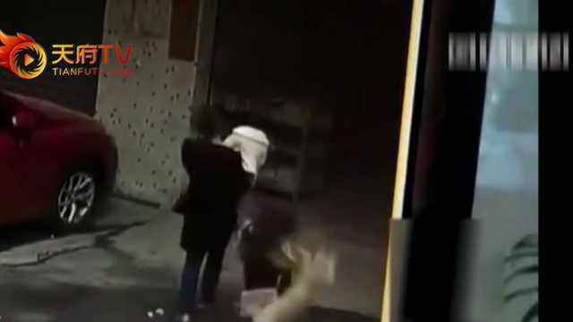 狗从天降 砸中过路女子