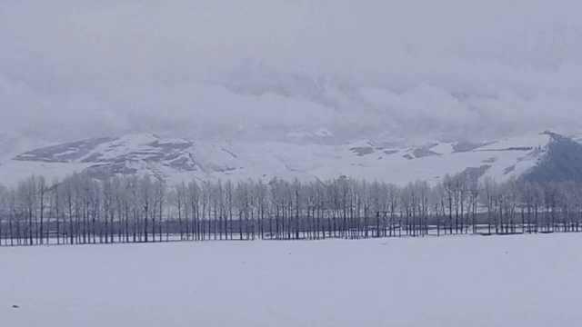 青海大雪如冰雪世界,游客雪地跳舞