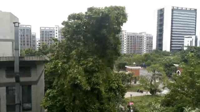 重庆发布黄色预警,多地将有暴雨