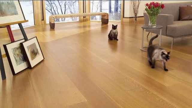 实木地板平日里如何保养?看这4招