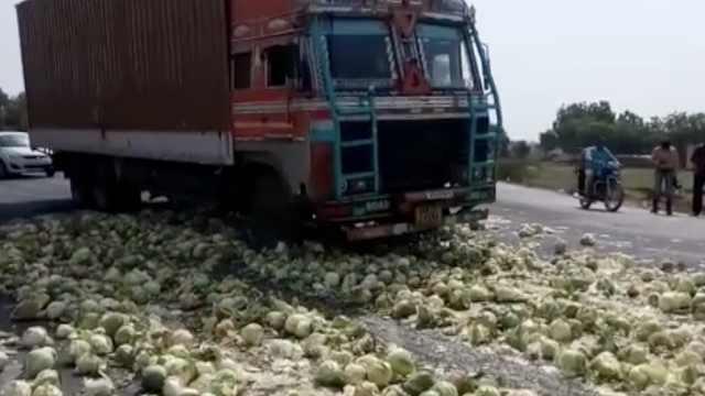 印度农民抗议,蔬菜堆满国道任车碾