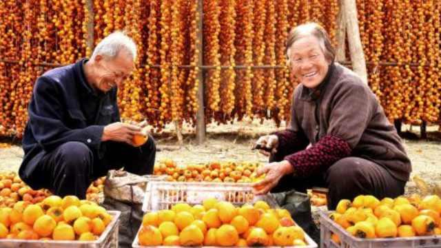 玉米葡萄大螃蟹!丰收节一起吃吃吃