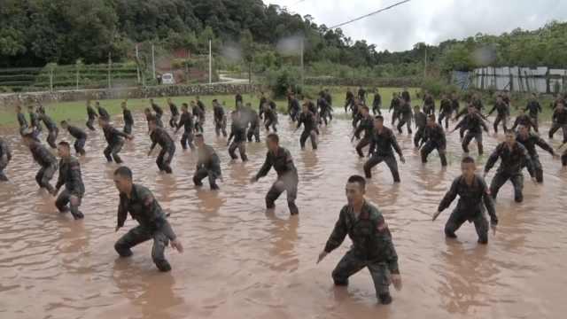 大片!反恐精英热带丛林实战演练