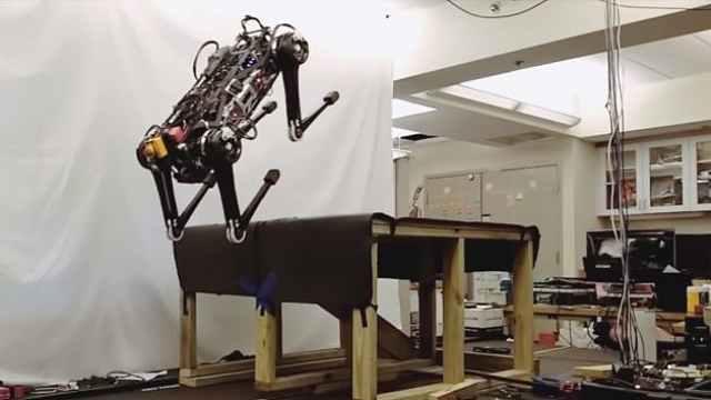MIT机器人解锁新成就:闭眼爬楼梯