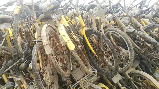 恐怖!共享单车