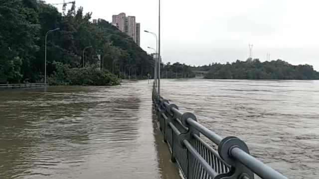 今夏最大洪峰过重庆,水漫潼南合川