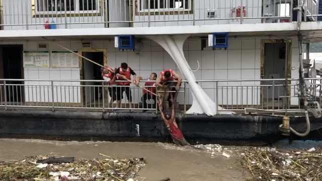 疑救落水鹅,合川男子险被洪水冲走