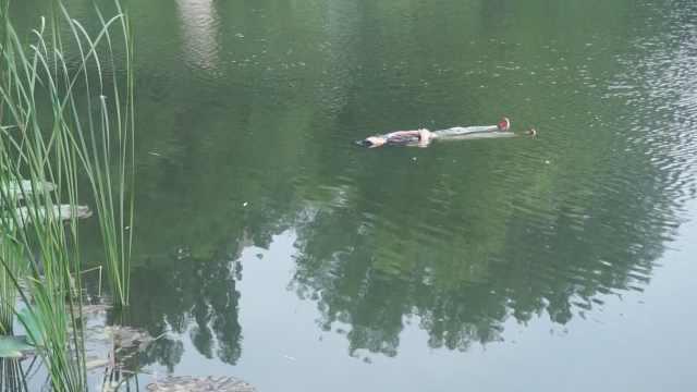 老人晨练落水,仰面漂浮水面等救援