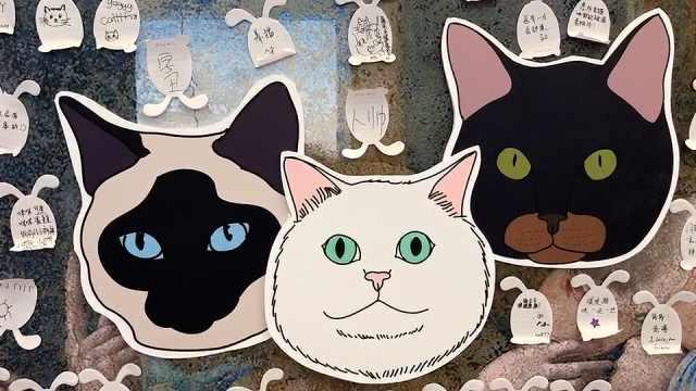 告别流浪猫!展览再现12个吸猫胜地