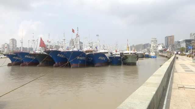"""舟山迎战台风""""安比"""",绳索连渔船"""