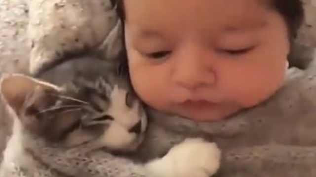 萌娃把猫咪当宝宝,抱着睡觉超可爱