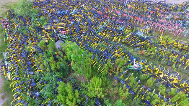 千辆共享单车被荒草埋没,犹如坟场