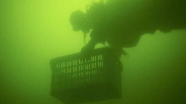 为护水源,90后潜水教练水底捡垃圾