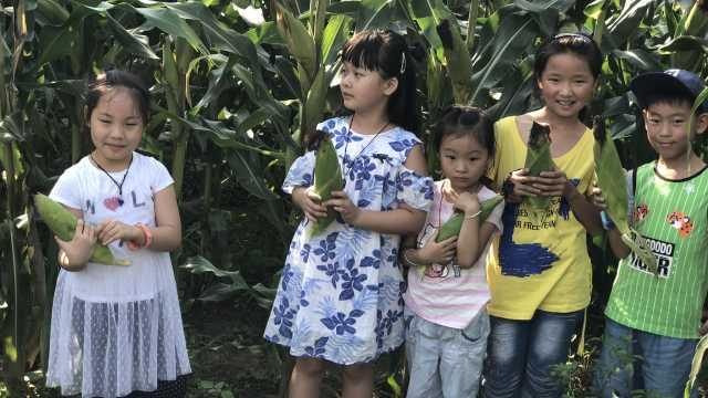 父女暑假做公益:孩子读书压力太大
