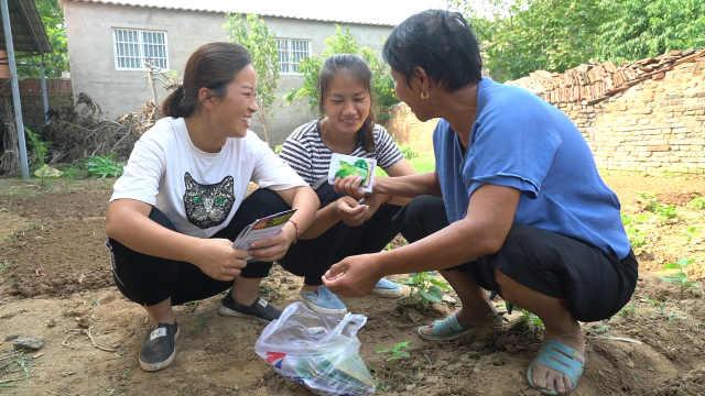 农村婆媳种秋菜,准备了好几样菜种
