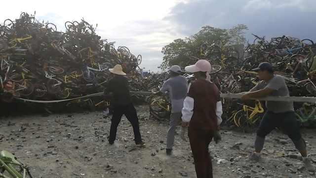 单车坟场堆积15米高,工人:愚公移山