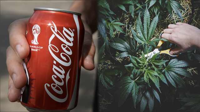 销量锐减,可口可乐要产大麻饮料?