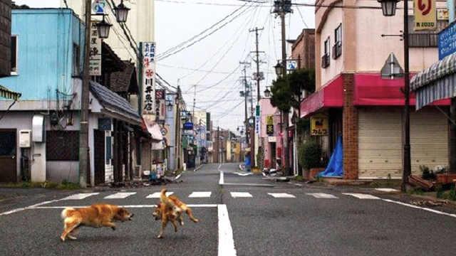 为什么日本大街上没有早餐店?
