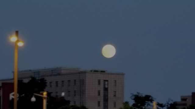 又圆又亮!魔都开启中秋赏月模式