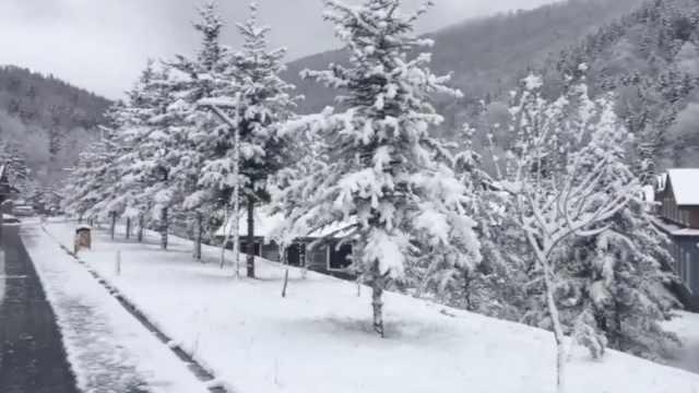 滑雪再等等!雪乡积雪厚度已达10cm
