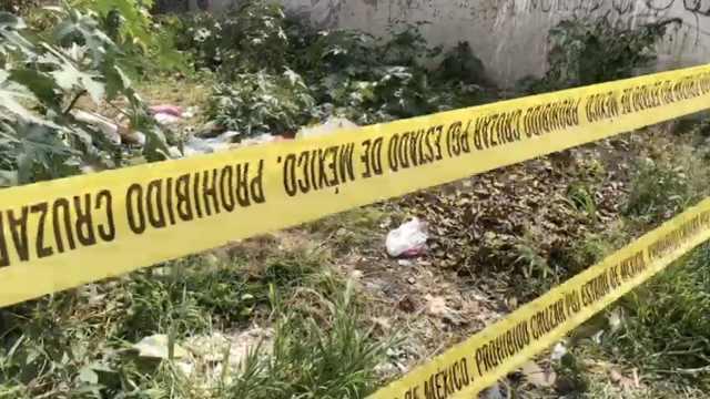 碎尸喂狗!墨西哥夫妻残杀20名女性