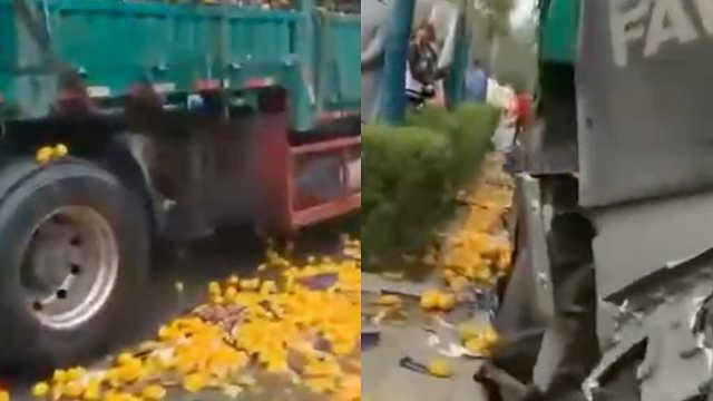过分!货车追尾,50村民哄抢1吨橘子