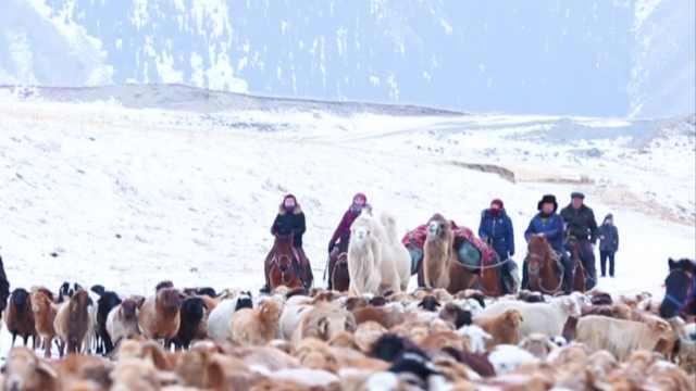 银装素裹!新疆大美雪景带你1秒入冬