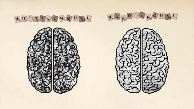 学外语能预防老年痴呆?是真的