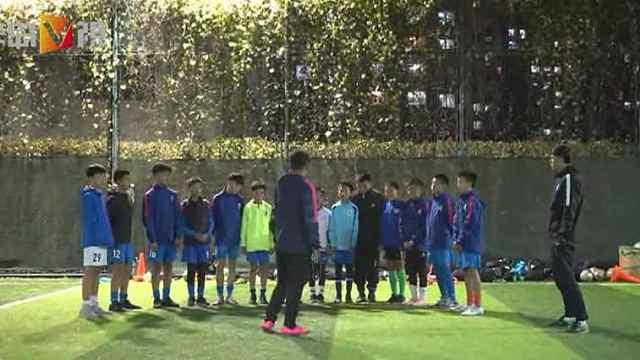 青岛足球小将半年拿了四个冠军