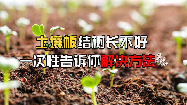 2分钟了解土壤板结危害及改良方法