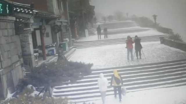 雪来了!立冬前一天,泰山迎来降雪