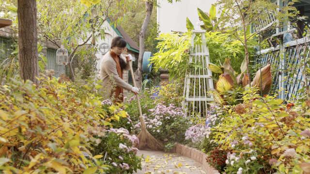 清华理工男:妻子生日送700㎡花园