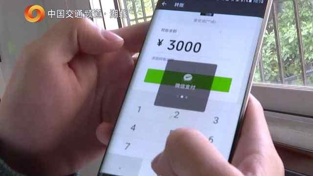 武汉、苏州警方联手打掉一诈骗团伙