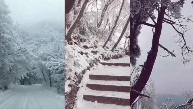 四川多地降初雪,光雾山披白色婚纱