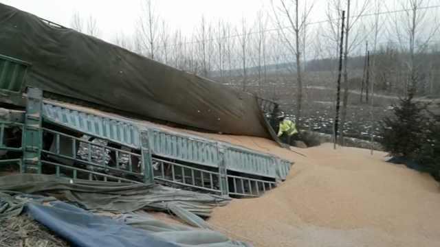 司机小便忘拉手刹,44吨玉米滑下坡