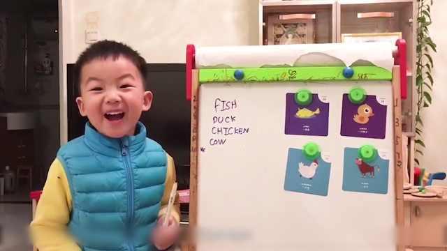 四岁英语天才做老师,已达初中水平